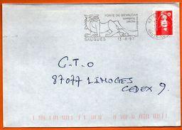 43 SAUGUES    GEVAUDAN 1997 Lettre Entière N° GG 306 - Mechanical Postmarks (Advertisement)