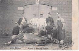 Ruiterij - Leopoldsburg (Kamp Van Beverloo)