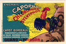 1PC Publ. Engrais Capophos Chloruphos Sylviphos Capot-Boprdeaux Guano De Poisson Illustr.Le Monnier  Coq - Reclame