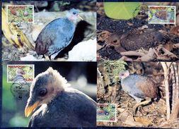 NIUA FO'OU  1992, Birds, WWF, 4  Maximum Cards - Maximumkaarten