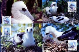 Christmas Islands, Birds, WWF, 1990 4 Maximum Cards - Maximumkaarten