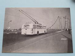 OBUS Nr. 2 : Baujahr 1955 ( Fotokaart ) ( Zie Foto Voor Details ) ! - Bus & Autocars