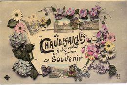 CP - Souvenir De Chaudesaigues - 1908 - Souvenir De...