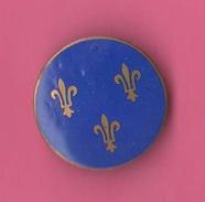 Scouts Spilla Con Gigli Di Francia Scautismo - Pin's