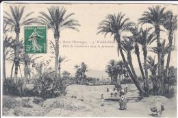 MARRAKECH  PISTE DE CASABLANCA DANS LA PALMERAIE - Marrakesh