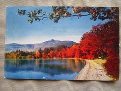 Mt. Chocorua And Chocorua Lake, White Mountains. Mike Roberts NC51. Postmarked 1959. - White Mountains