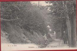VERVIERS PROMENADE DES RECOLLETS D.V.D. 5716 Liege Luik (En Très Bon Etat) - Verviers