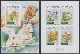 Solomon Islands 2015 Dog Chien MNH 1SS+1sheet Imperforate - Solomon Islands (1978-...)