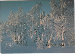 Joulurauhaa  - (Suomi/Finland) - WWF (World Wide Fund For Nature) Postcard - Finland