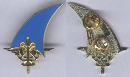 Insigne De L'Etat Major Interarmes Des Forces Françaises De Djibouti - Army