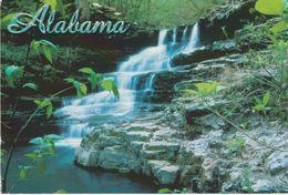 Waterfall And Beautiful Wilderness In ALABAMA - Etats-Unis