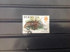 Bermuda - Kreeften (10) 1979 - Bermuda