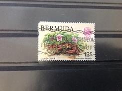Bermuda - Krabben (12) 1979 - Bermuda