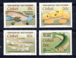 Ciskei - 1989 - Trout Hatcheries- MNH - Ciskei