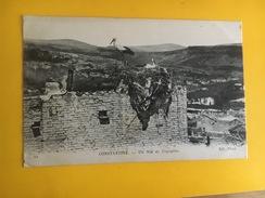 2.171122 -  Constantine Un Nid De Cigognes - Algérie