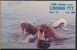 °°° 9593 - UKRAINE - LVOV - AMATEUR RADIO - 1984 °°° - Ucraina