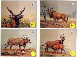 Mali 0538/41 Photos Originales Utilisées Pour L'émission WWF élan De Derby 1986 - Unused Stamps