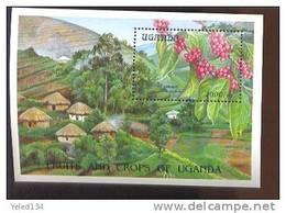 UGANDA  1210  MINT NEVER HINGED SOUVENIR SHEET OF FLOWERS - ORCHIDS - Végétaux