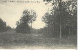 NOTRE-DAME-AU-BOIS - OVERIJSE : Bassin Du Merisier - Arboretum - Cachet De La Poste 1910 - Overijse