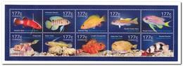 Curacao 2014, Postfris MNH, Fish - New York - Hoofdkwartier Van De VN
