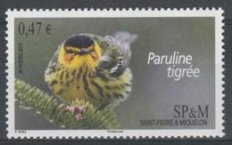 Saint Pierre And Miquelon, Bird, Cape May Warbler (Setophaga Tigrina), 2011, MNH VF - Unused Stamps