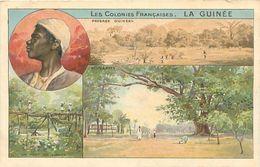 Cpa -    Les Colonies Françaises - La Guinée  -  Paysage Guinéens   C780 - Guinée