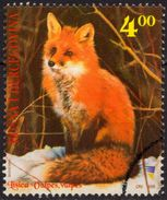 FOX - Vulpes Vulpes - 2006 Bosnia And Herzegovina - Used - Game