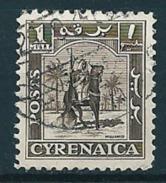 Cyrenaica 1950  Senussi-Kampfreiter  1 Mill. Mi-Nr. 1 Gestempelt/used - Altri - Africa