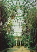 Grote Kaart Grand 1989 Alphonse Balat  Wintertuin De Koninklijke Serres Van Laken Brussel Royal Palace Palais Royalty - Monuments, édifices