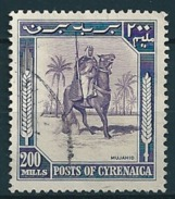 Cyrenaica 1950  Senussi-Kampfreiter  200 Mill. Mi-Nr. 12 Gestempelt/used - Altri - Africa