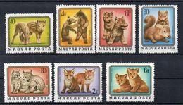 HONGRIE  Timbres Neufs ** En Série De 1976 ( Ref 886 A)  Animal - - Hongrie