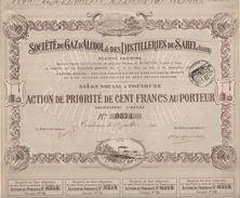1910 - ACTION DE 100 FRANCS - SOCIETE DU GAZ D'ALCOOL & DES DISTILLERIES DU SAHEL (ALGER) - SIEGE SOCIAL A TOULOUSE - Electricité & Gaz