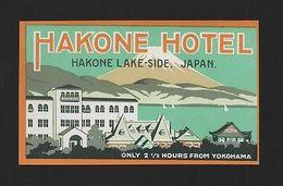 Vintage Art HOTEL LUGGAGE LABEL HAKONE LAKE SIDE JAPAN YOKOHAMA HOTELS Z1 - Unclassified