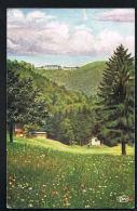 68- DREI AEHREN -  Trois Epis - CPA  Wiedemann's Kûnstkekarte  - Recto Verso -  Paypal Sans Frais - Trois-Epis