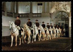 [015] Pferde-Karte 126, Spanische Hofreitschule Wien, Schulquadrille, ~1970 - Pferde