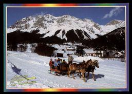 [015] Pferde-Karte 133, Pferdeschlitten, Ramsau Am Dachstein, Steiermark, Gel. 1999 - Pferde