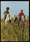 [015] Pferde-Karte 161, 2 Reiter - 4 Pferde, ~1980 - Pferde