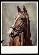 [015] Pferde-Karte 199, Künstlerkarte Rudolf W. Janner 'Edle Zucht', ~1960, Mängel - Pferde