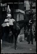 [015] Pferde-Karte 203, Horse Guards Parade London, ~1965 - Pferde