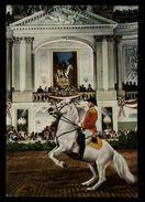 [015] Pferde-Karte 207, Spanische Hofreitschule Wien, Gerittene Levade, Gel. 1972 - Pferde