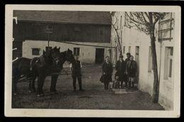 [015] Pferde-Karte 241, Kutsche In Waltersdorf (Liebstadt), Sachsen, ~1920 - Caballos