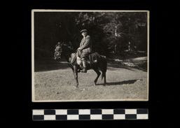 [015] Pferde-Photo 243, Pferd Mit Reiter, Privates Photo, ~1920 - Pferde