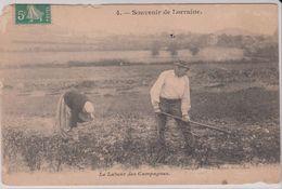AGRICULTURE . Souvenir De Lorraine . Le Labeur Des Campagnes (Couple Travaillant Leur Champ) - Culture