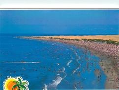 CPSM Isla Canarias     L2425 - Espagne