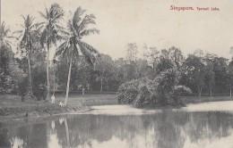 Singapour - Singapore - Tyersall Lake - Singapore