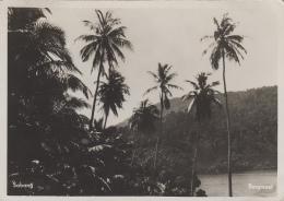 Indonésie - Indonesia - Sabang - Bergmeer - Indonésie