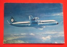 Postcard-KLM Lockheed Prop-Jet Electra II - 1946-....: Moderne