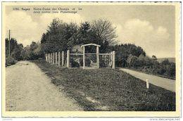 SUGNY ..--  N.D. Des Champs Et Les 2 Routes Vers PUSSEMANGE . Voir Verso . - Vresse-sur-Semois