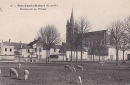 BRIE COMTE ROBERT BOULEVARD DE L'OUEST/MOUTONS EN TRAIN DE PAITRE (dil27) - Brie Comte Robert