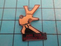 Pin414a Pin's Pins / Beau Et Rare / SPORTS  : CLUB DE JUDO NEUFCHATEAU - Judo